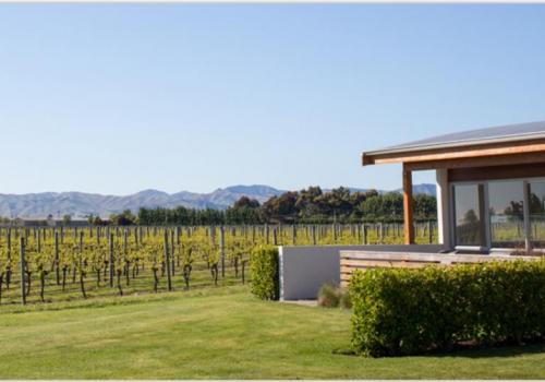 Vintners, Hotel, Renwick, Marlborough, wijngaarden