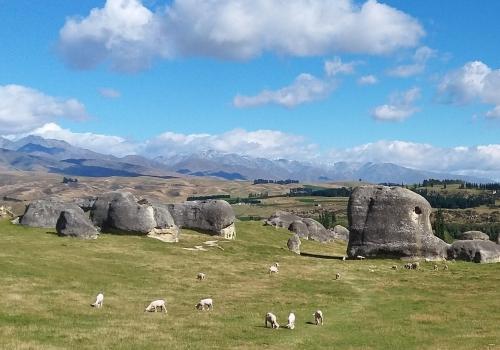 Elephant, Rocks, Oamaru, Wairaki