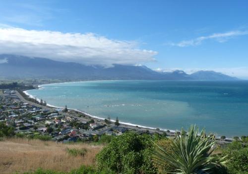 Kaikoura, Whalewatch, aardbeving, walvissen, potvis